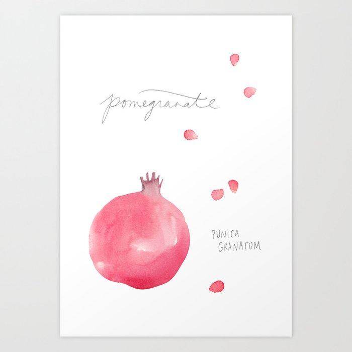 Pomegranate watercolor Art Print