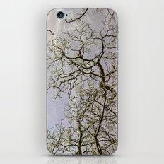 I do not seek I find iPhone & iPod Skin