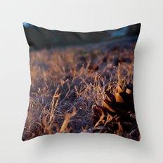 Fall Cones Throw Pillow