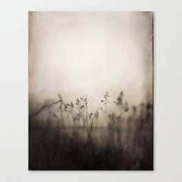 August by the Sea Canvas Print
