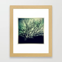 Fall of trees Framed Art Print