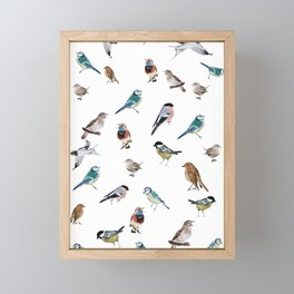 I love birds Framed Mini Art Print