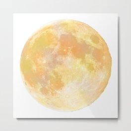 moon tapestry for window screening Metal Print