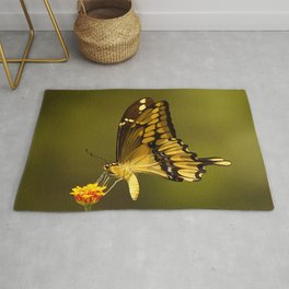 Giant Swallowtail Butterfly Rug