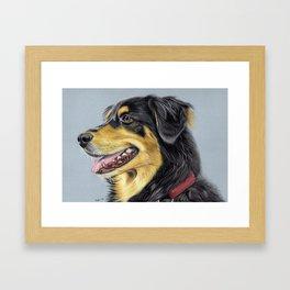 Dog Portrait 01 Framed Art Print