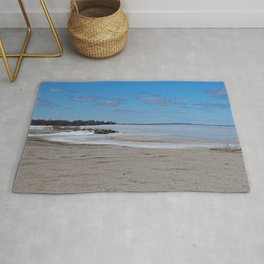 One Wicked Winter Rug