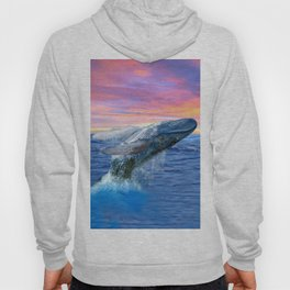 Breaching Humpback Whale at Sunset Hoody