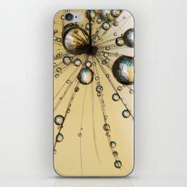 Single Dandy Seed Web Drops iPhone Skin