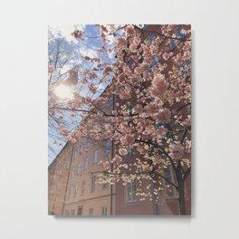 Spring in Stockholm  Metal Print