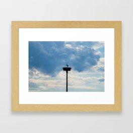 A Stork among the Clouds Framed Art Print