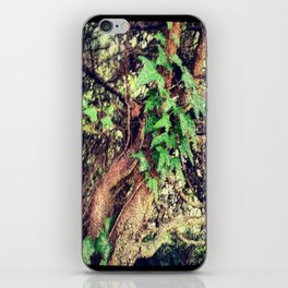 Tangle of Gnarly Branches & Ivy iPhone Skin