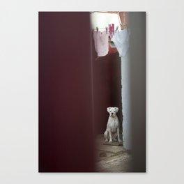 Dirty Laundry Canvas Print