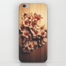 Light // Dark iPhone & iPod Skin