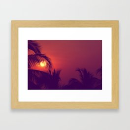 Tropical Nights Framed Art Print