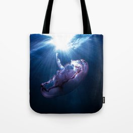 Dark Side of the Moon Tote Bag