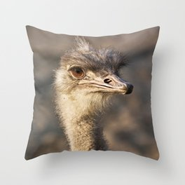 South African Ostrich Throw Pillow