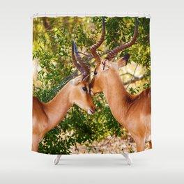 Gazelle (Color) Shower Curtain