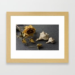 Flowers and conch shells. Framed Art Print