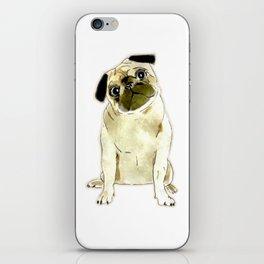 Sitting Pug iPhone Skin