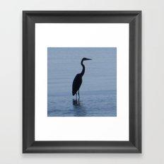 The Blue Heron Framed Art Print