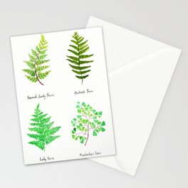 fern collection watercolor Stationery Cards