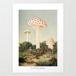 The Finest Giant Mushrooms Art Print