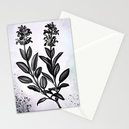 Sage Botanical Illustration Stationery Cards