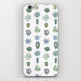 One Dozen Succulents iPhone Skin