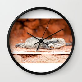 Lizard Wall Clock