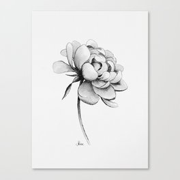 Peony Flower, Black and White Canvas Print