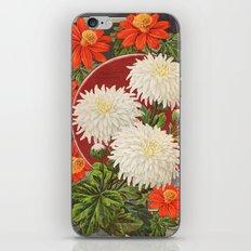 Vintage flower Chrysanthemum iPhone & iPod Skin