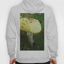 Fly on Magic Mushroom Hoody