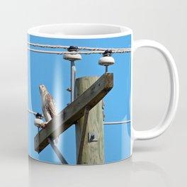 Red Tailed Hawk on Telephone Pole 2 Coffee Mug
