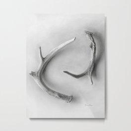 Yin & Yang - A Graphite Drawing by Brooke Figer Metal Print