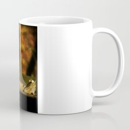 Taking the weight off my Paws Coffee Mug