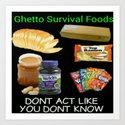 Ghetto Survival Foods by lilbudscorner