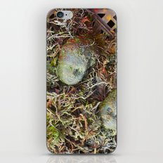 Alien Collective iPhone & iPod Skin
