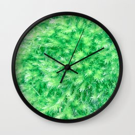 Soft and Squishy Wall Clock