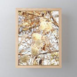 Winter bloom Framed Mini Art Print
