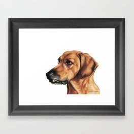 Dog Artwork in coloured pencil Framed Art Print