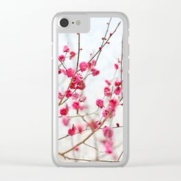 Beautiful Cherry Blossoms at the Imperial Palace in Kyoto, Japan Clear iPhone Case