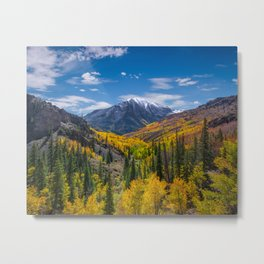Autumn Views Metal Print