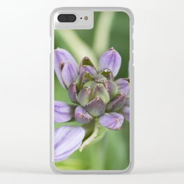 Lavender Velvet Slippers Clear iPhone Case
