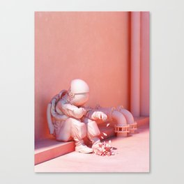 I Should've Known Better Canvas Print