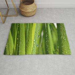 Green Grass 34 Rug