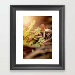 """""""I am...a mushroom on whom the dew of heaven drops now and then"""" --John Ford Framed Art Print"""