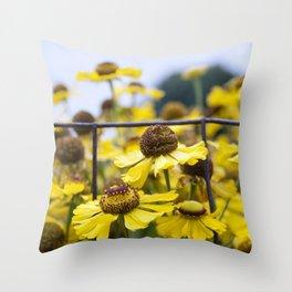 Fenced Daisies Throw Pillow