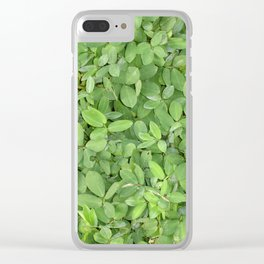 Abstract photo of green leaves Clear iPhone Case