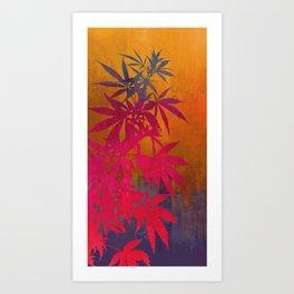 Cannabis Plant Art Print