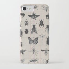 Vintage Insect Study on antique 1800's Ledger paper print iPhone Case